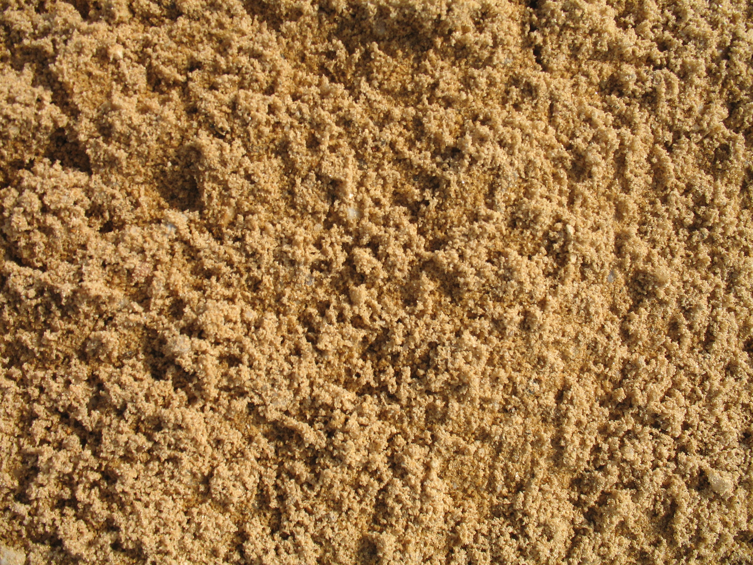 sandy soil Sandy loam soils are popularly known for their excess water-drainage property as well as nutrient content they are considered to play a very important role when it comes to the healthy growth of plants in a garden.